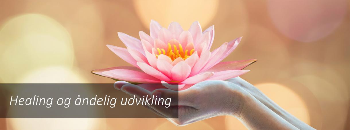 Healing forløser gamle traumer og skaber helbredelse.